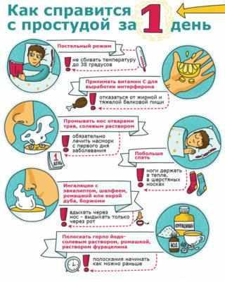 лечение простуды в носу в домашних условиях