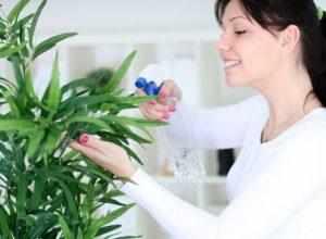 Какая оптимальная влажность воздуха для ребенка в квартире?