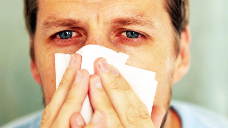 аллергический персистирующий ринит у детей