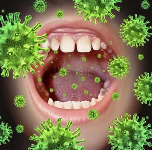 стрептококк пневмония в носу