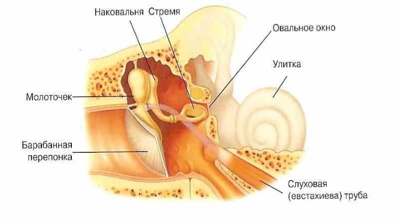 катаральный отит симптомы