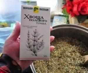 Лечение аденоидов полевым хвощом