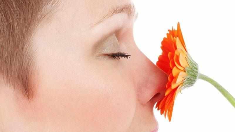 нос не чувствует запахов чем лечить
