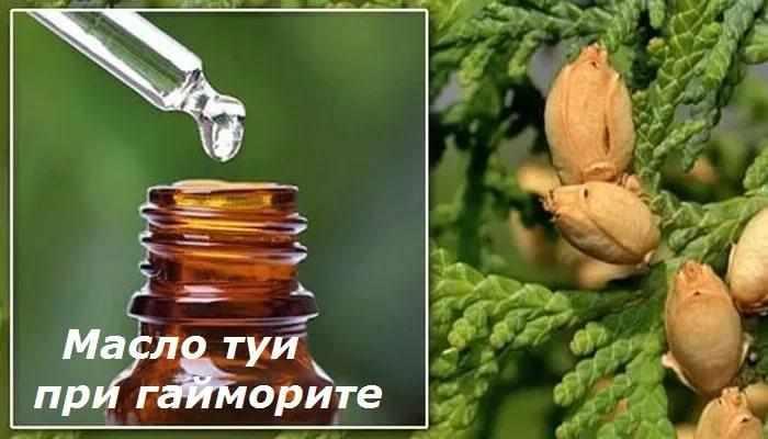 применение масла туи при гайморите