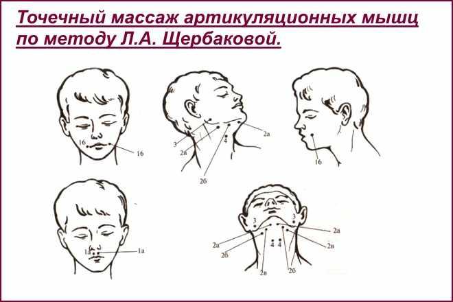 Точечный массаж артикуляционных мышц
