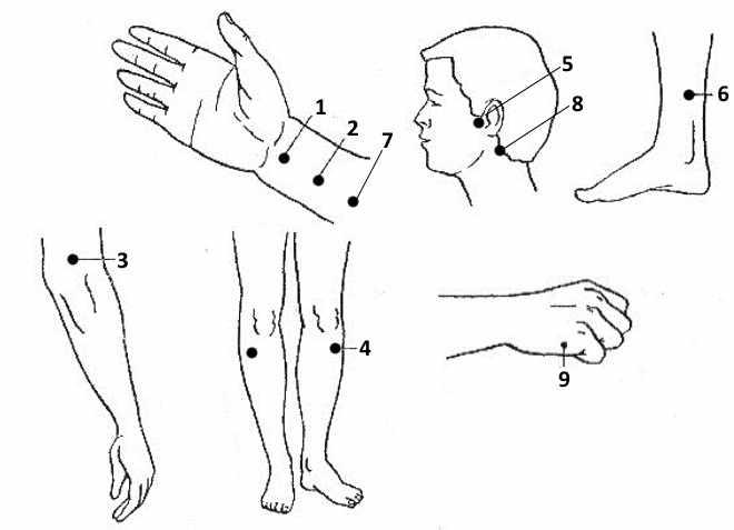 Схема точек массажа при заикании