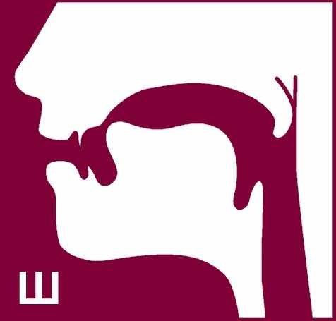 Логопедический профиль звука ш