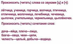 Дифференциация звуков [ч]—[ц] в словах