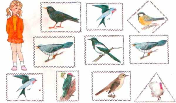 Перелетные птицы рисунок