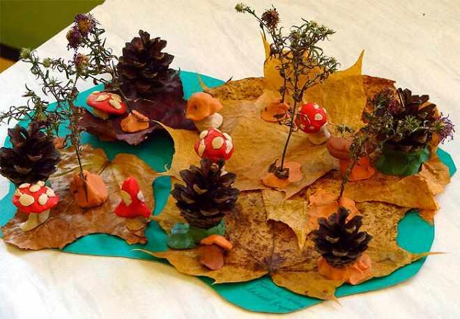 Поляна из листьев и шишек