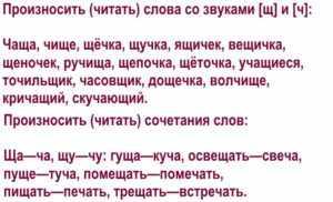 Дифференциация звуков [ч]—[ш] в словах