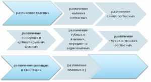 Последовательность развития фонематического слуха (схема)