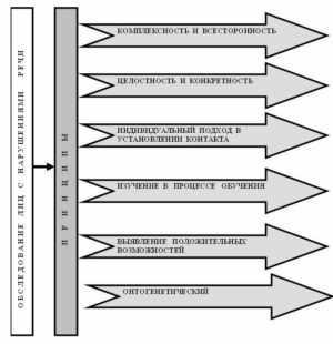 Принципы логопедического обследования