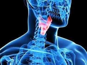 Симптомы ларингита у человека
