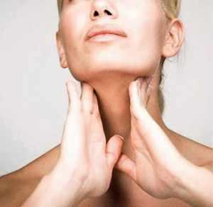Какую функция выполняет щитовидная железа