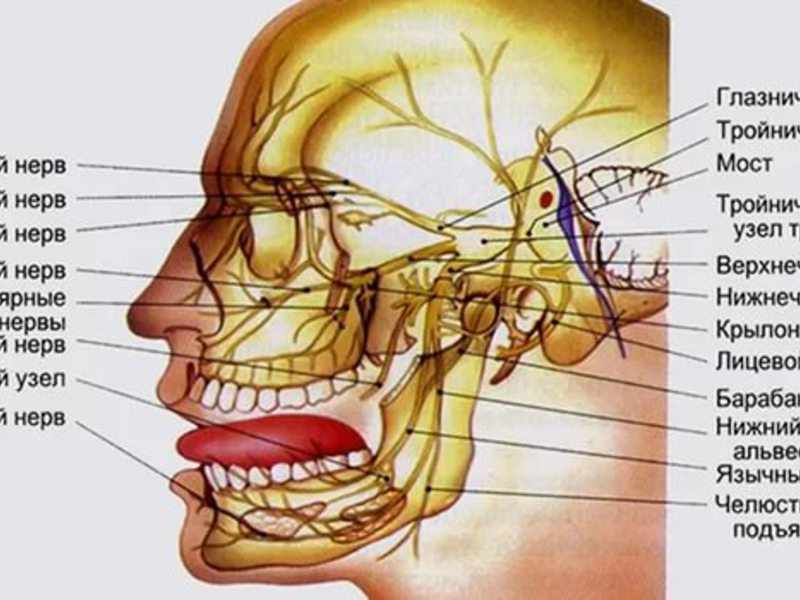 Лечение тройничного нерва